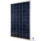Солнечный модуль Sunways ФСМ-270П